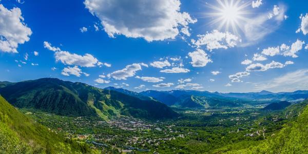 Aspen in Summer