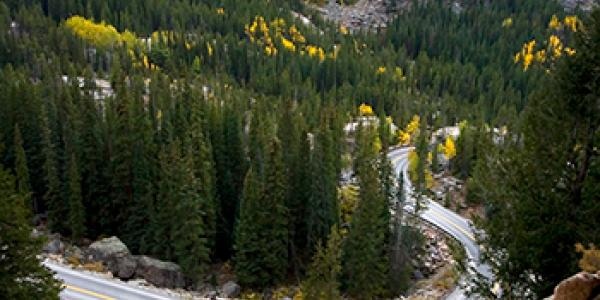 Aspen Independence Pass