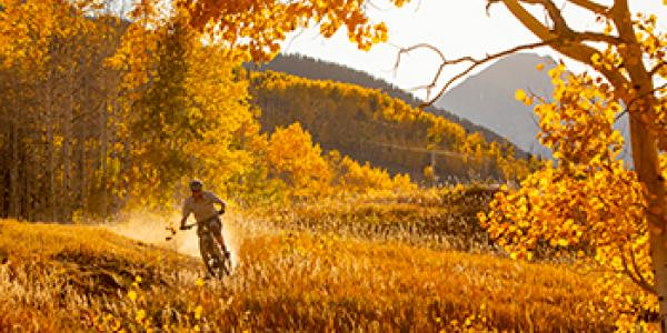 Fall Activities in Aspen During COVID-19