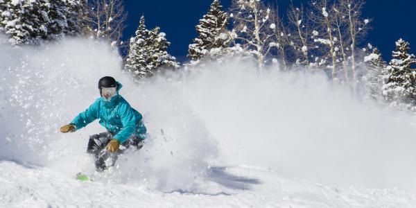 Powder Snowboarder Aspen