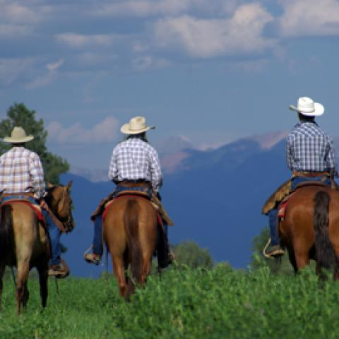 A Guide to Horseback Riding in Aspen
