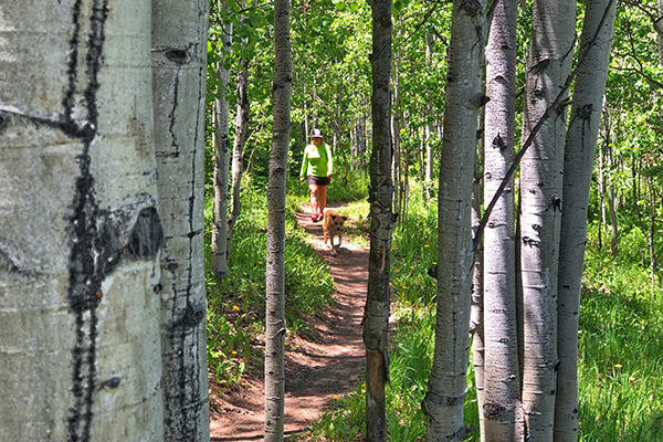 Alternative Hikes in Aspen