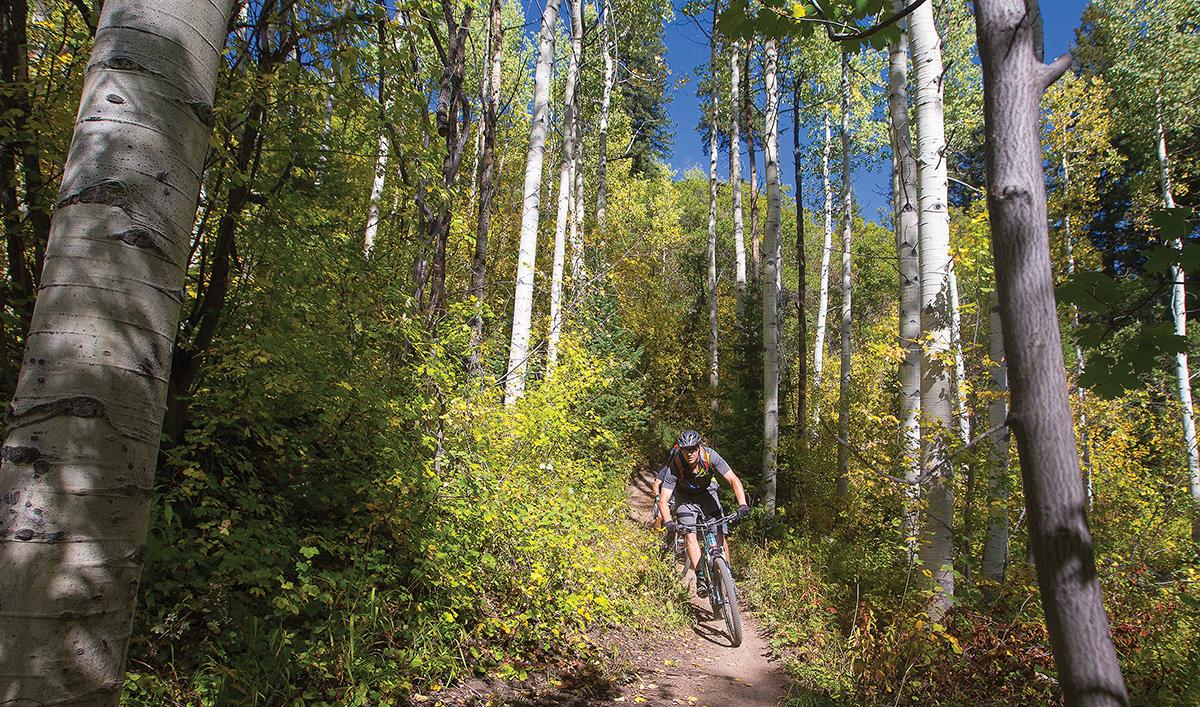 mountain biking things to do in aspen summer