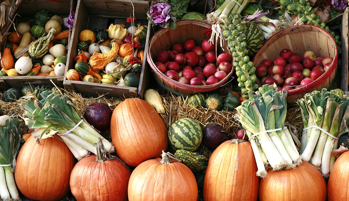 fall farmers market aspen