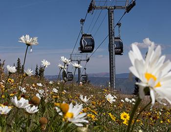 Aspen Snowmass Gondola Passes