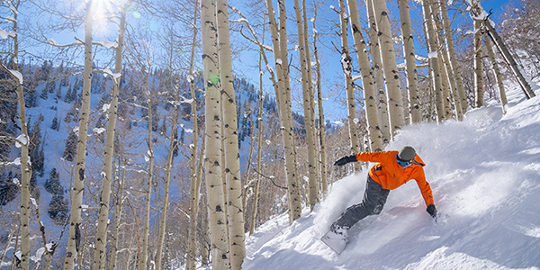 4th Night Free in Aspen this Spring