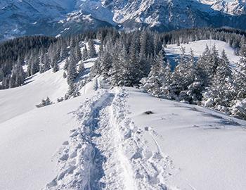 Winter Hiking in Aspen