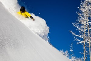 Powder Tours take you to the fresh, untouched powder on Aspen Mountain.