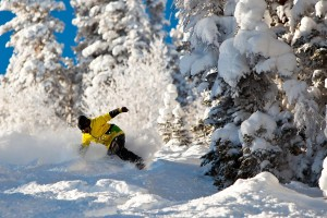 There's plenty of snowy fun in Aspen during the winter!